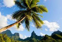 Voyage en Polynésie / M'iTiK vous invite à voyager au travers la Polynésie pour découvrir l'univers de Tikis.