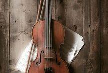 Violin / El instrumento