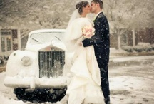 Winter Wedding  /  Winter Wonderland;Ice,snowy white,  jewels, snow, cream, roses, snowflakes, twinkle lights, twigs, branches, woods, cranberries, blue, silver, glitter, Pearls, ivory, Gold,