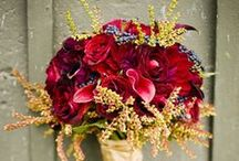 Fall Wedding &  Events  / apples, leaves, nature, trees, outdoor spaces, pumpkins, burlap, tweed, straw, drapery, purple, orange, yellow, carmel apples, candy apples, cider, donuts, cocktails, treats, decor, invitations...etc
