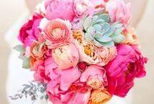 02 April 2016 - Bouquets (flower colours)