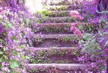 ~gr❤️w~ / gardening