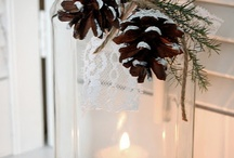 Holiday Decor & Wrapping Ideas