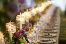 Wedding Planning / Trying to get some ideas together for our summer commitment ceremony...
