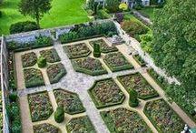 j'ai descendu dans mon jardin...j'ai descendu... / by Christine Perry