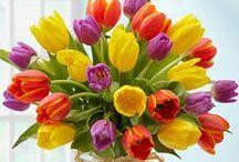 Flowers / ♖ PINTEREST.com/BrandMagazine♖