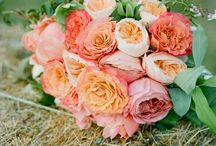 Celebrate Weddings - Flowers