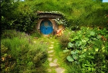 Fairy  Gardens / by Marianne Inman