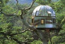 Baumhäuser // Treehouses / Die tollsten Baumhäuser! // Greatest Treehouses