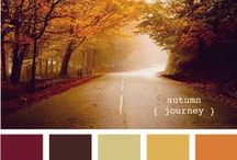 Colour Palette / by Mum Dawes