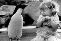 Vintage Children's Photos / by Norma Crain