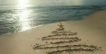 Blissful Holidays By The Beach / Celebrating the holidays by the sea