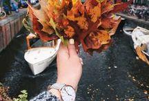 Autumn / TrendyKiss women's watches