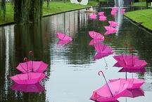 Umbrellas / by Pamela Renee