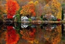 Autumn ~ all of her beauty & glory!! / by Amy Bromley