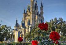 Disney  *O*  °○° •●• / by Amy Bromley