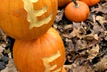 Halloween  Decor / by Amy Bromley