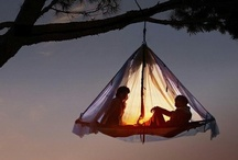 Under The Stars/Camping/Hiking