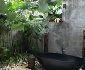 Green Living Decor / Blurring the lines between the indoors and outside, The Jungle Book theme is adventurous and exotic letting you explore the wilder side of design.