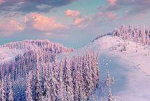 Skiing Dream