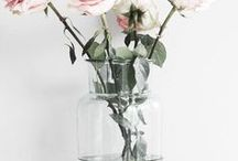 •Flowers / Beautiful♡