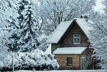 •Winter