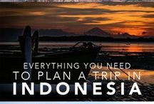 Indonesia travel / Discover the best travel tips for Indonesia, how to travel in Indonesia, what to see, Indonesia bucket list and how to save money for your next Indonesia travel. Best things to do in Indonesia, the ideal itinerary and Indonesia ultimate bucket list.