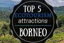 Borneo travel / Discover the best travel tips for Borneo, how to travel in Borneo, what to see, Borneo bucket list and how to save money for your next Borneo travel. Best things to do in Borneo, the ideal itinerary and Borneo ultimate bucket list.