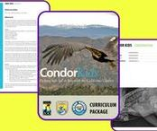 Conservation Education / Collection of K-12 conservation education resources: ideas, inspirations, and Explore Science products!