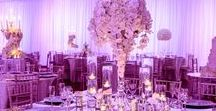 White wedding theme / A fresh look at a white themed wedding, all images taken by Peekaboo at our events.