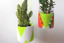Crafty Things / by Sara Schwenneker