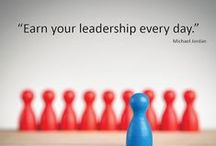 Leadership / Demonstrating emotional intelligence, integrity and responsibility.  Leading and serving others.