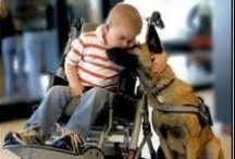 Service Animals / Kids and adults with all kinds of disabilities use service animals to help them live independently...plus they are super smart and cute.
