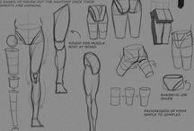 Anatomically correct or useful
