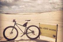 """Mountain Biking / 26"""", 29er, 29+, mid-fat bicycles"""