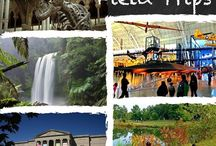 GHF Virtual Field Trips! / Experiencing the real world, visiting favorite museums, and engaging with passionate people enrich the homeschool life.  GHF has gathered reviews of real and virtual field trip ideas from around the world, written by gifted and 2e families who can share their experiences with you.
