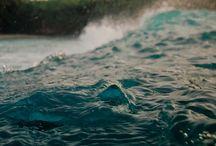 Swim / Beauty