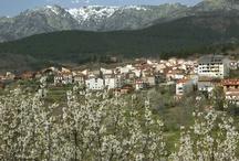 El Arenal - Valle del Tiétar - Ávila