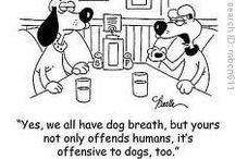 February- Pet Dental Month
