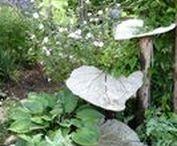 Gardening / Ideas for garden decor and plant care