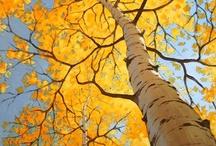 Season: Fall / by Meaghan Newell