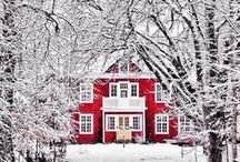 Winter Wonderland / by Megan LaLone