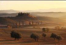 Toscane : au coeur des collines / 6 jours au coeur de la Toscane : le voyage idéal pour découvrir les paysages et les petits villages qui font de la Toscane le paradis de tout photographe. #Toscane #Tuscan #Italie #Italy #Colines #Hills #Soleil #Sun #Couleurs #Colors #Voyage #Travel #Photo #Photography #Voyagephoto  Venez visiter notre site et télécharger notre #roasbook : http://photographesdumonde.com