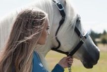 Equestrian Bloggers / Equestrian Bloggers Group with bloggers who have a passion for horses...