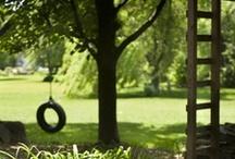 Future Backyard / by Joanna Bandelin
