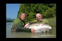 Great River Fishing Adventures Videos / A collection of Great Fishing Videos / by Great River Fishing Adventures
