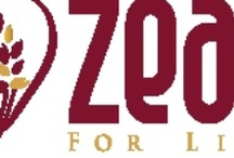 home base biz opportunity / HEALTH & WELLNESS  A WAY TO FINANCIAL FREEDOM THAT CAN BE PASSED ON TO YOR LOVED ONES www.fasttracmn.zealforlife.com / by Richard Fry ZEAL FOR LIFE