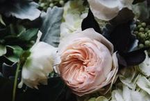 Inspired Blooms + Florals / Our favorite bouquets and arrangements, for weddings, the home and beyond.