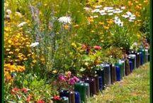 Flowers, Gardens, and Butterflies