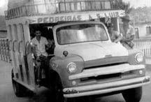 BUSSES - ÔNIBUS - JORGENCA / Ônibus Mundiais / by Jorge Cavalcante (JORGENCA)